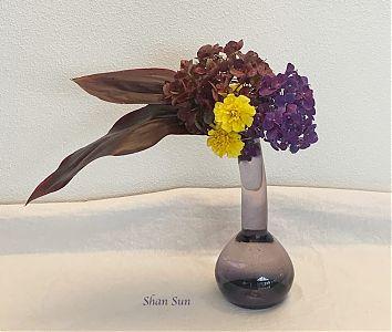 Shan Sun