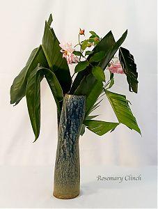 Rosemary Clinch