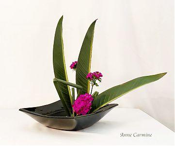 Anne Carmine